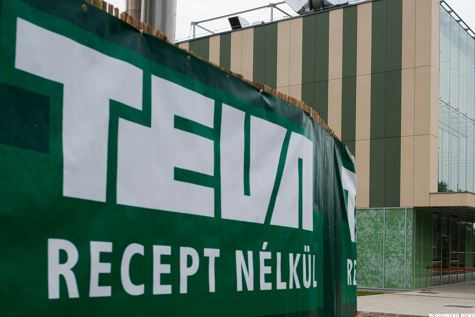 Teva Pharmaceutical Industries Limited (TEVA) Receives