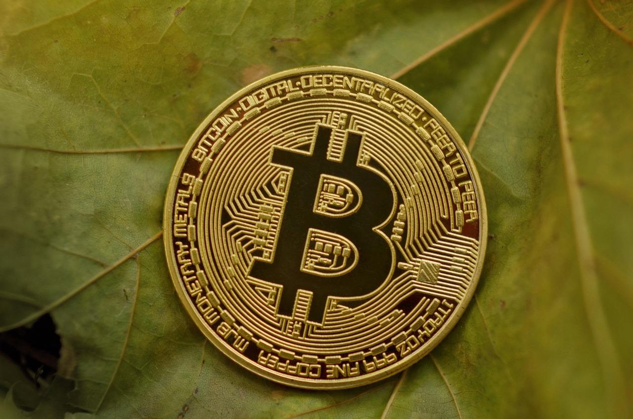 Bitcoin news crypto currency daily roundup november market